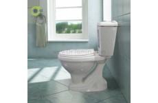 توالت فرنگی چینی گلسار فارس مدل نیلوفر با مخزن