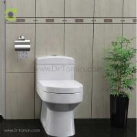 توالت فرنگی چینی گلسار فارس مدل هلیا 70 درجه 1
